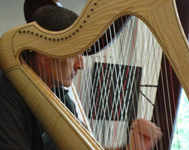 man playing the harp